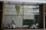 community-glass-shower-doors-mirror-custom-185