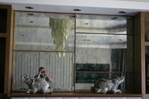 Community Glass, Shower Doors, Mirror, Custom (185)